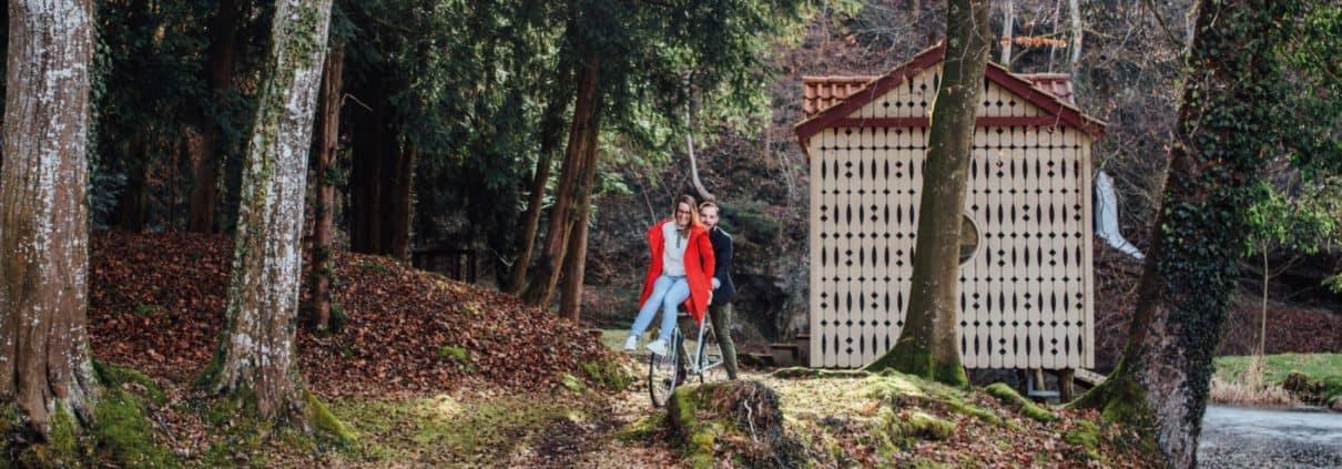 Ein Mann und eine Frau fahren Fahrrad durch einen Wald.